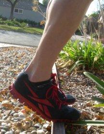 eccentric heel drop start picture