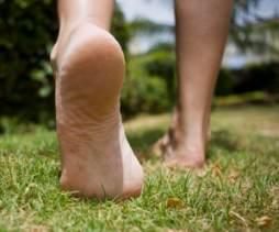 tendonitis foot plantar fasciitis